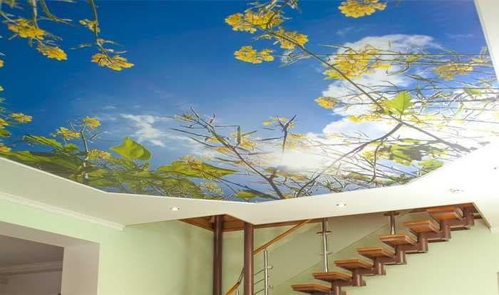 Натяжной потолок черутти